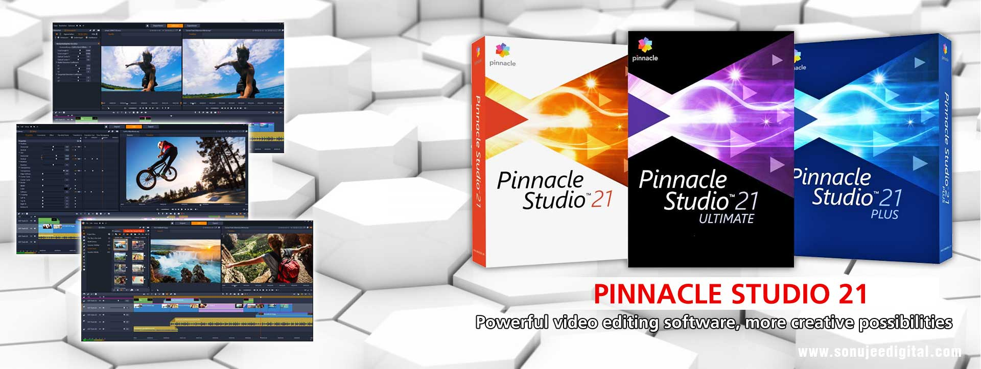 Pinnacle 21 edius 9 grass valley dgflick new wedding for Pinnacle studio templates free download